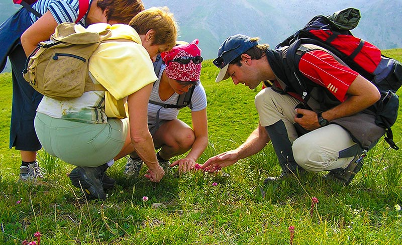 alpes-haute-provence-rando-pedagogique