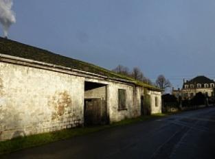 1. Distillerie Vinicole du Blayais