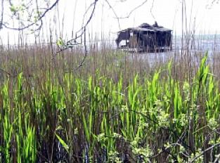 Vue sur les marais et le Lac Nord
