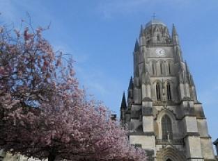 Cathédrale Saint-Pierre (XVe)