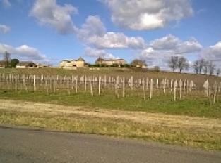 Le Château Puyfromage et son colombier - Francs côtes de Bordeaux