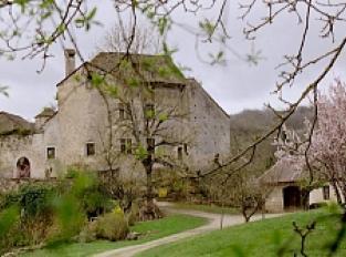 Maison forte le Nid d'Aigle de Brotel
