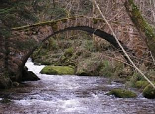 Pont de Subertha