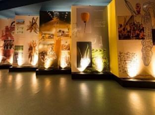 Espace muséographique de la Maison du Jambon de Bayonne