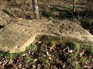La pierre à cupules