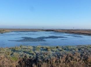 Les différents usages de l'eau dans les marais