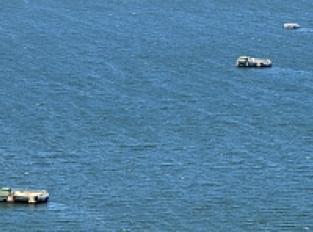 Vue sur le lac Biscarrosse - Parentis