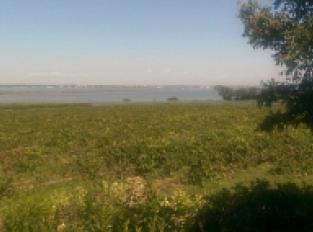 Vue sur le vignoble et les étangs