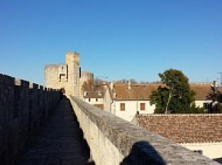 Visite des remparts d'Aigues-Mortes et de la tour de Constance