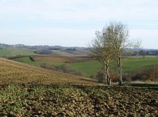 Point de vue sur la campagne Lauragaise
