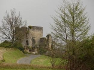 Ruines du Château Malangin