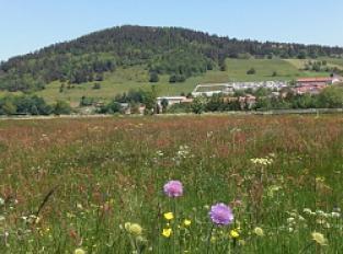 Village de Coucouron