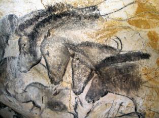 grotte chauvet.jpg
