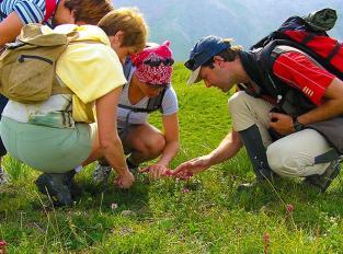 rando-pedagogique-dans-les-alpes-de-haute-provence
