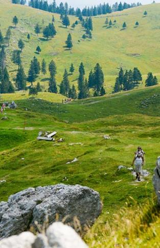 slovenie-incontournable-Hiking-at-Velika-planina