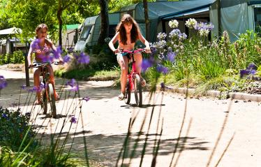 camping-bellsol-pineda-del-mar-ambiance