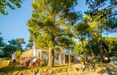 camping-le-fort-espagnol-bar.jpg