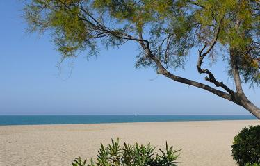 camping-romarin-plage-argeles