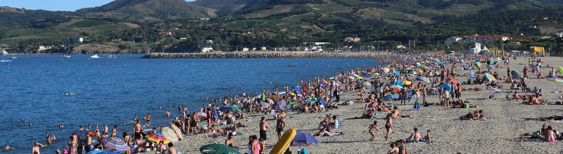 camping les marsouins--argeles-sur-mer_plage