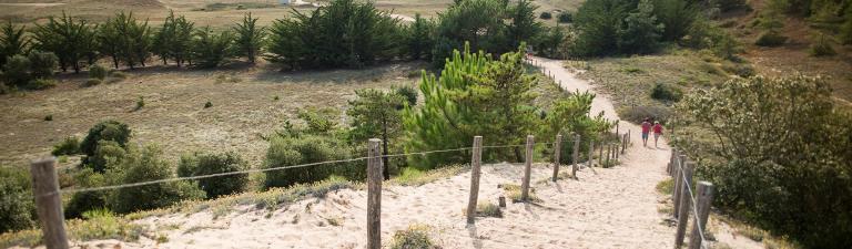 slider-camping-la-paree-preneau-acces-direct-plage