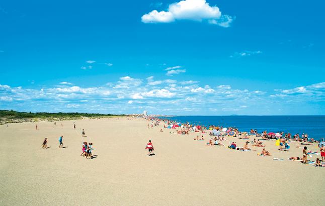 Location De Mobil Home Languedoc Vacances En Camping