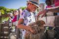 camping-Grand-Metairie-mini-ferme-2019