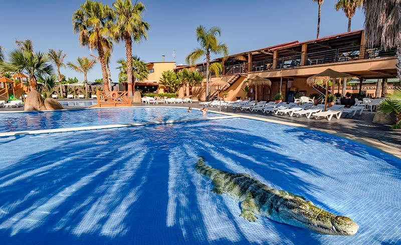 07-Enmar-piscine-crocodile-800x488.jpg