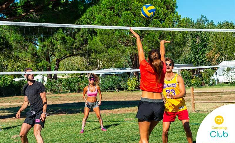 14 - Florida-Volleyball.jpg