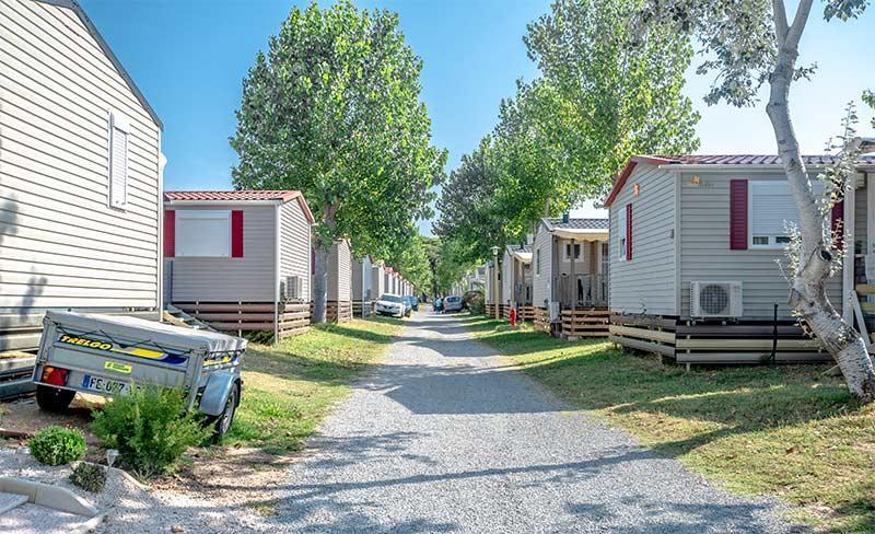 5 - Saint-aygulf-allee-camping.jpg