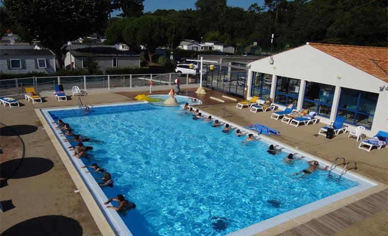 Albizia-piscine-01.jpg