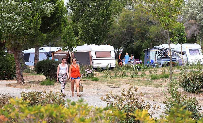 Cote-des-roses-Allee-camping.jpg