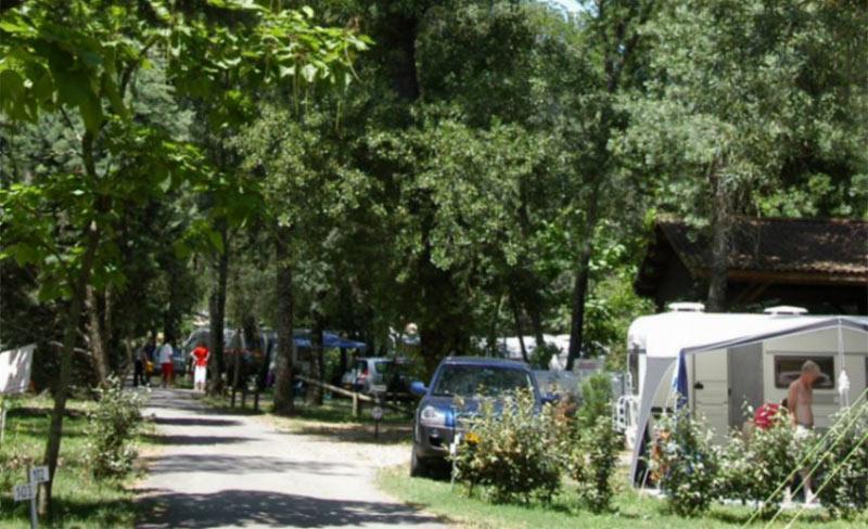 Domaine-Gaujac-Allée-camping-01.jpg