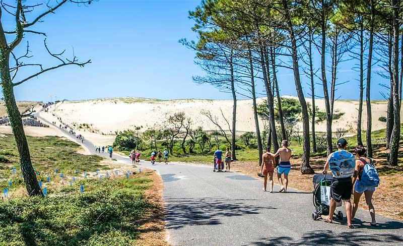 Domaine-Marina-Dunes-Pins-01.jpg