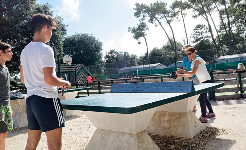 Logis-Ping-pong.jpg