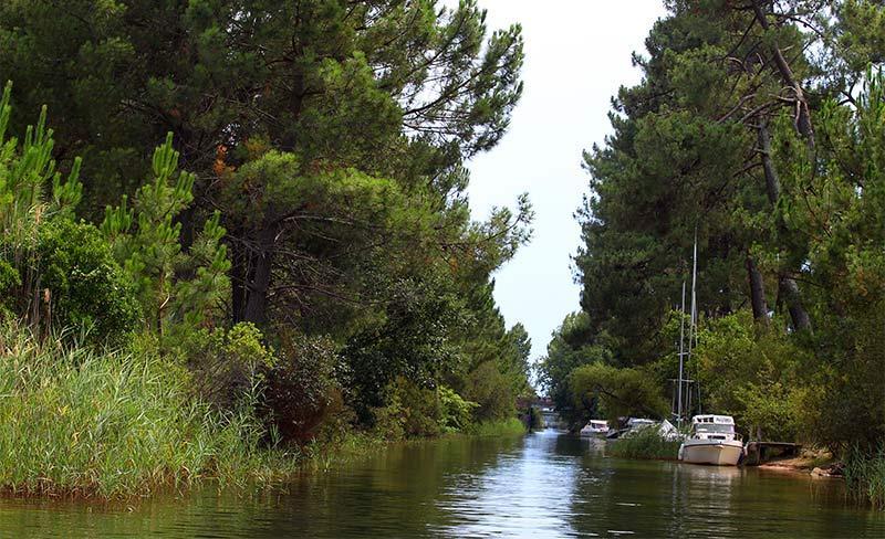 Navarrosse-Lac-bateaux-03.jpg