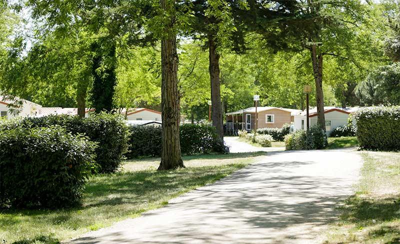 Petit-Rocher-allee-camping.jpg