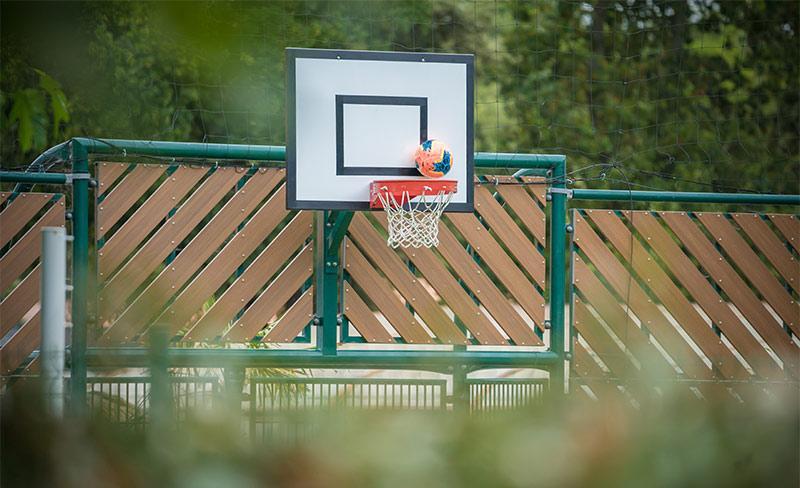 Pomme-de-pin-Basket-01.jpg