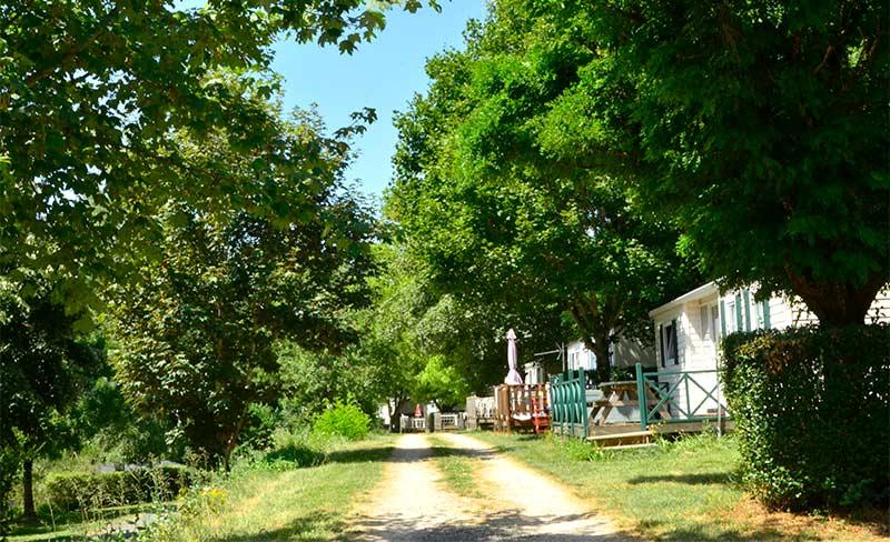 Terrasses-du-lac-allee-camping.jpg