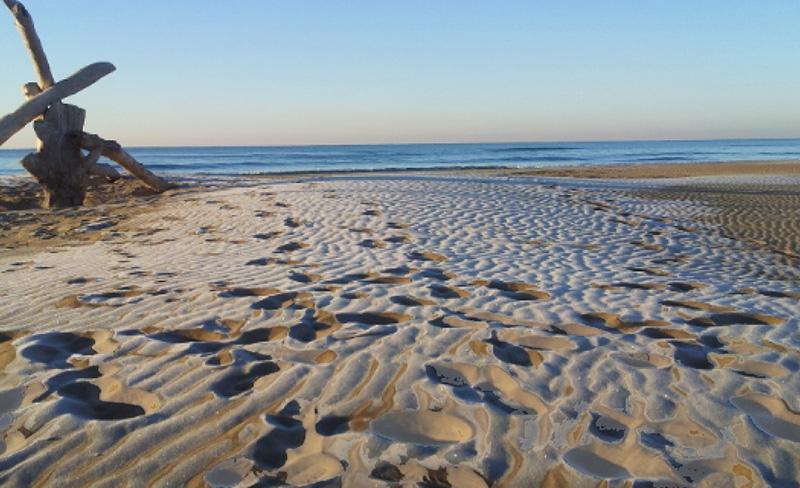 abri-de-camargue-des-plages-paradisiaques