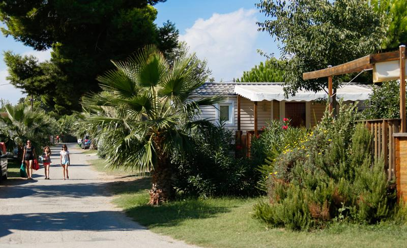 camping le bosc-mobil-homes