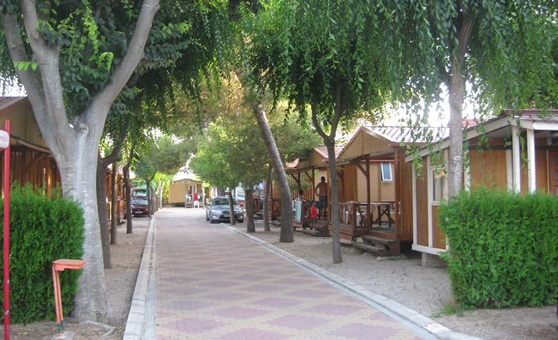 camping-alqueria-allee-chalet