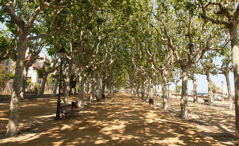camping-bonavista-promenade