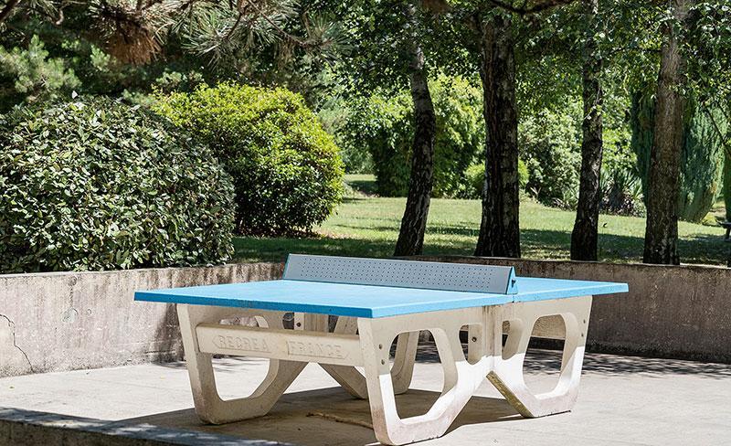 camping-bontemps-vernioz-loisir-ping-pong