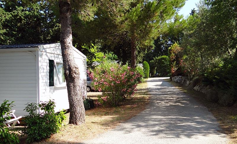 camping-fontisson-camping-ombrage