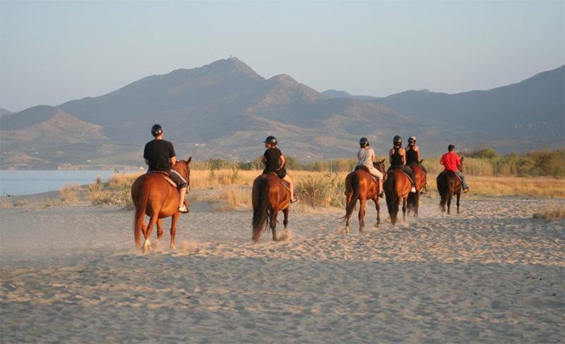 camping-la-sirene-argeles-sur-mer-promenade-cheval
