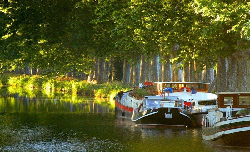 camping-mas-lavandes-canal-du-midi