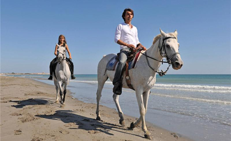 camping-mer-et-camargue-chevaux