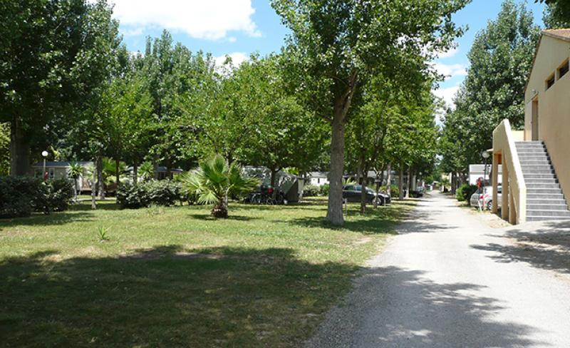 camping-oasis-palavasienne-12.JPG