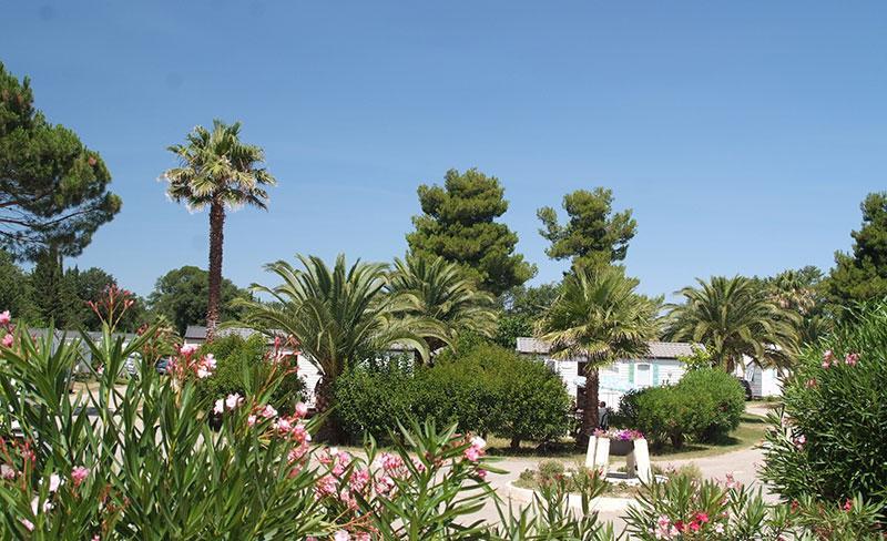 camping-pearl-argeles-environnement-fleuri
