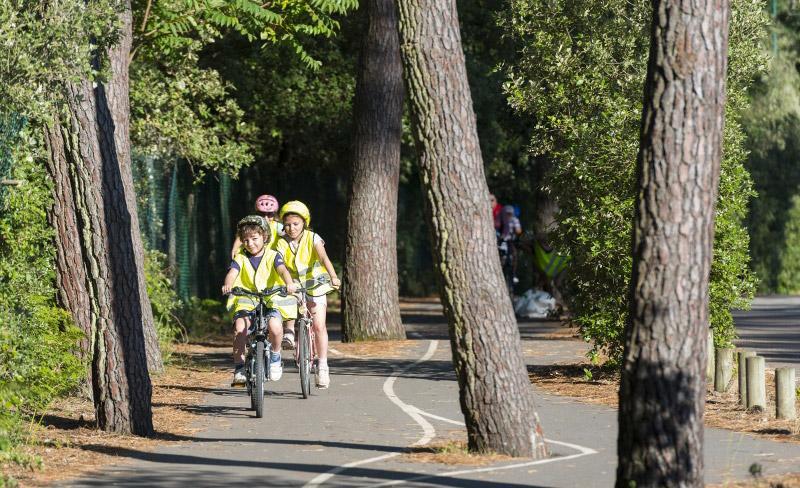 camping-saint-hubert-environnement-piste-cyclables
